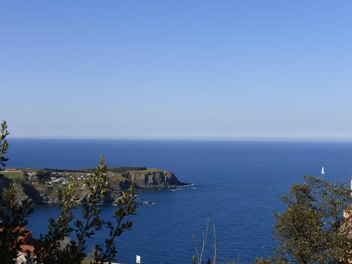 Maison, Splendide vue face à la Mer