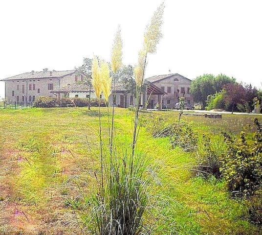 Camera Matrimoniale La GARZAGA  - Ceresara