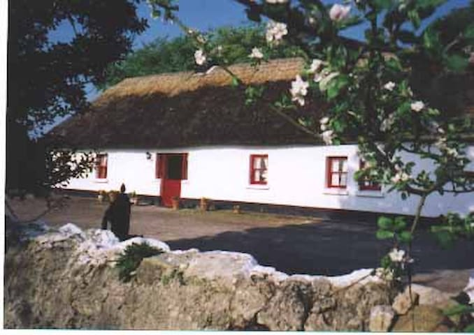 Thatched Cottage in Adare - Adare - Hus