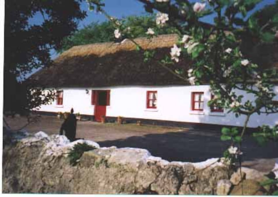 Thatched cottage in adare houses for rent in adare for Adare house