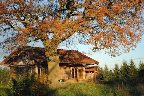 Lovely wooden lock cabin