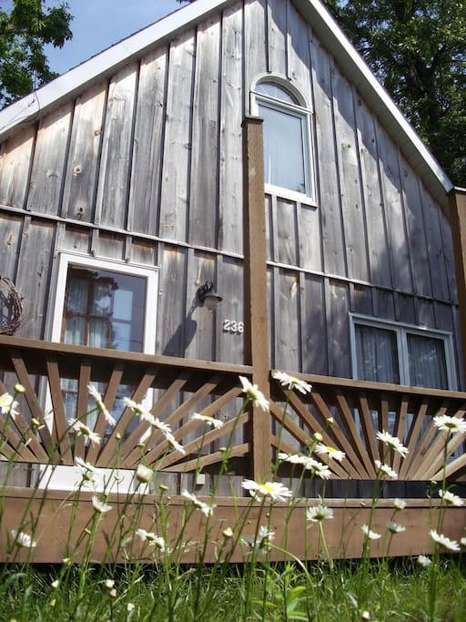 Dog Friendly Cabins In Southampton