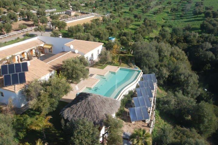 Maison écologique LAS GATERAS - Villamartín - Villa