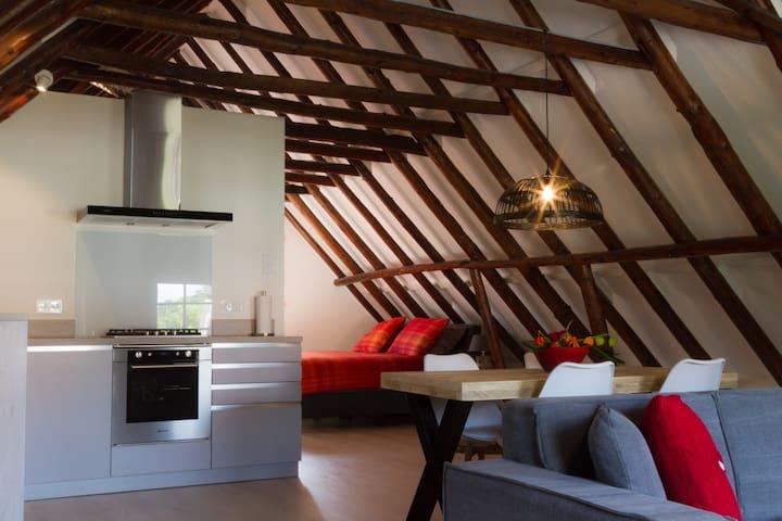 Ruim sfeervol  appartement - Bad Nieuweschans