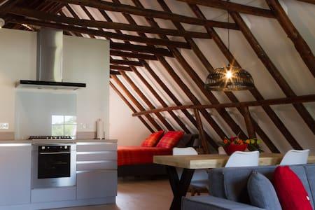 Ruim sfeervol  appartement - Bad Nieuweschans - 公寓