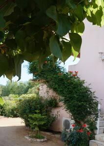 Maison avec jardin clos et piscine - Sainte-Lucie de Porto-Vecchio