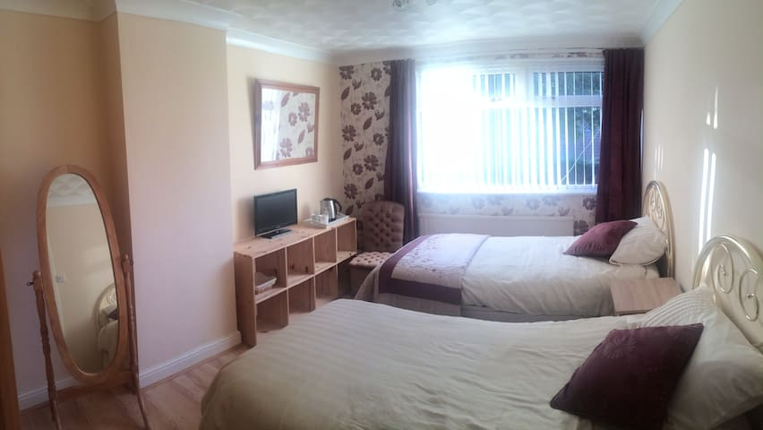 Wine Coloured Twin room - Caerleon - Casa