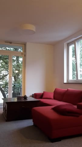 quiet and big central appartment - Munich - Leilighet