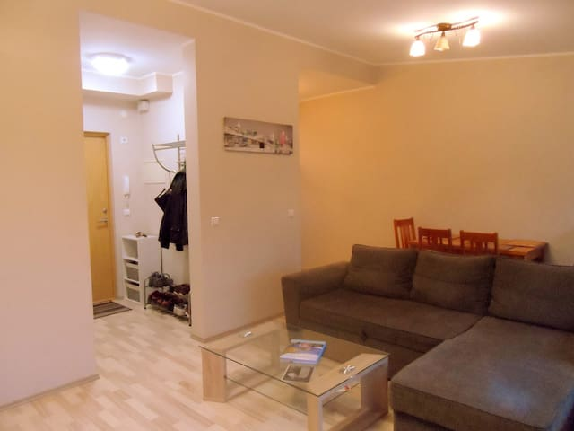 Cozy apartment near downtown - Tartu - Pis