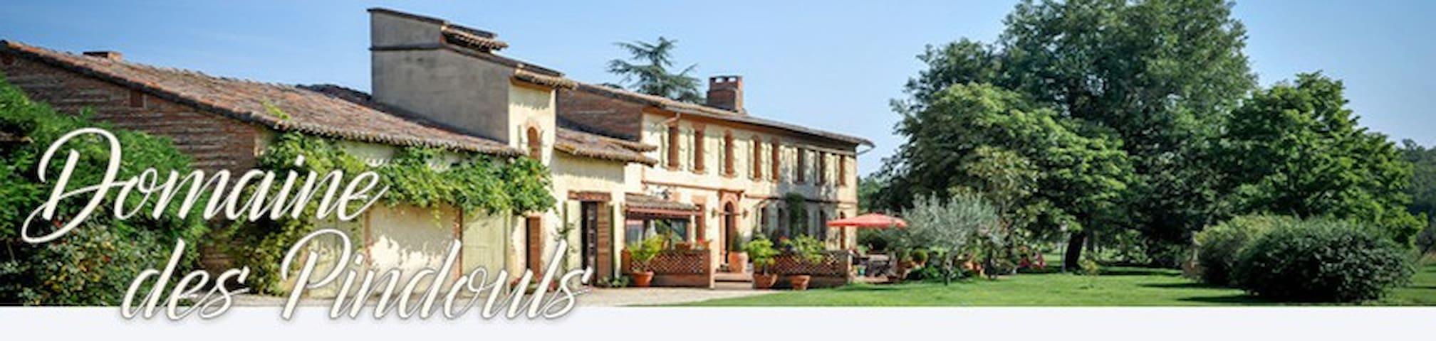 domaine des pindouls - Villeneuve-lès-Bouloc - Dom