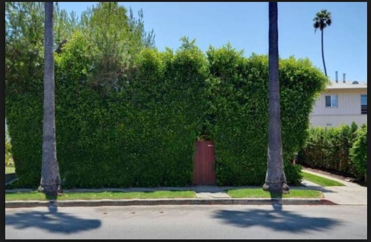 The little red gate in the enormous hedge that wraps around the house.