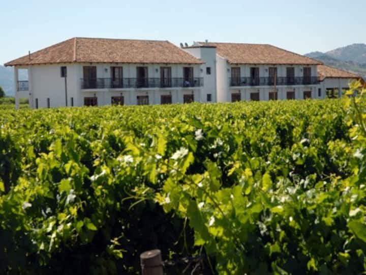 Small hotel in a vineyard