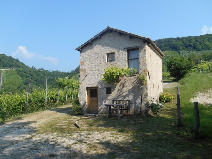 Cottage in the Prosecco hills