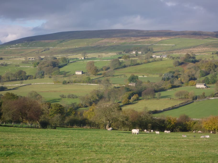 Beautiful Coverdale