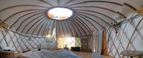 Real bamboo yurt