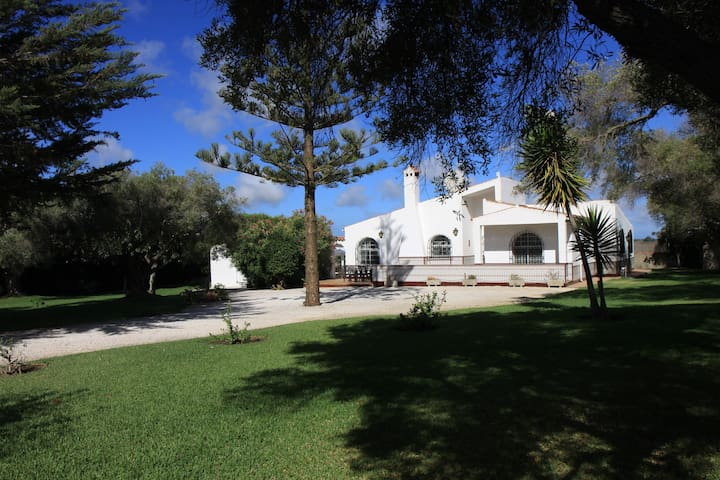 Golf villa beautiful garden & pool  no 688 - Chiclana de la Frontera - House