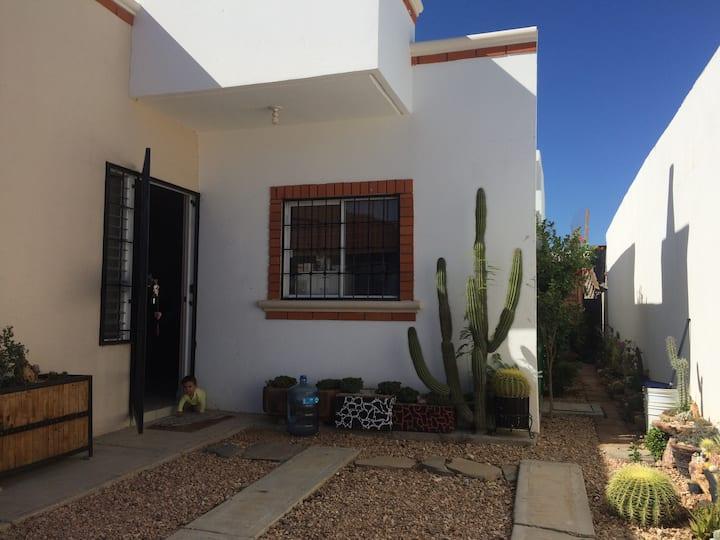 Cactus home!!