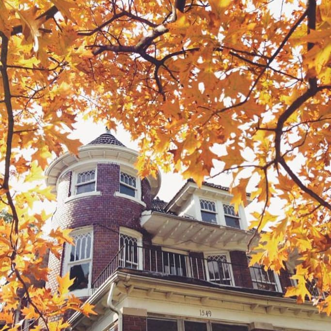 The neighborhood and home is beautiful in fall.