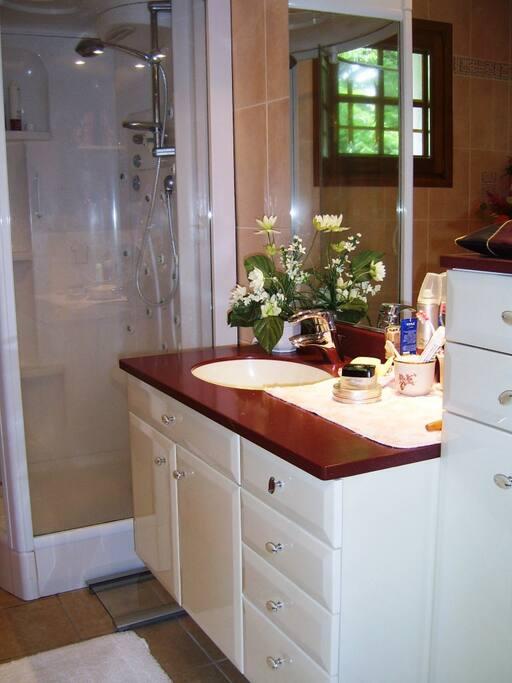 la salle de bain avec une douche confortable