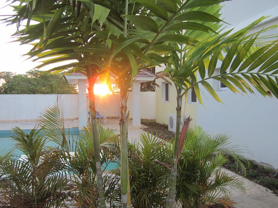 The pool area with sunrise