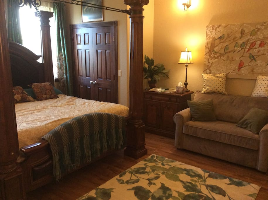 Aurora Room will sleep 3 king size bed and pull out couch bed for third person if traveling with a third party, no need to rent additional room, Has Bathroom with shower across hall