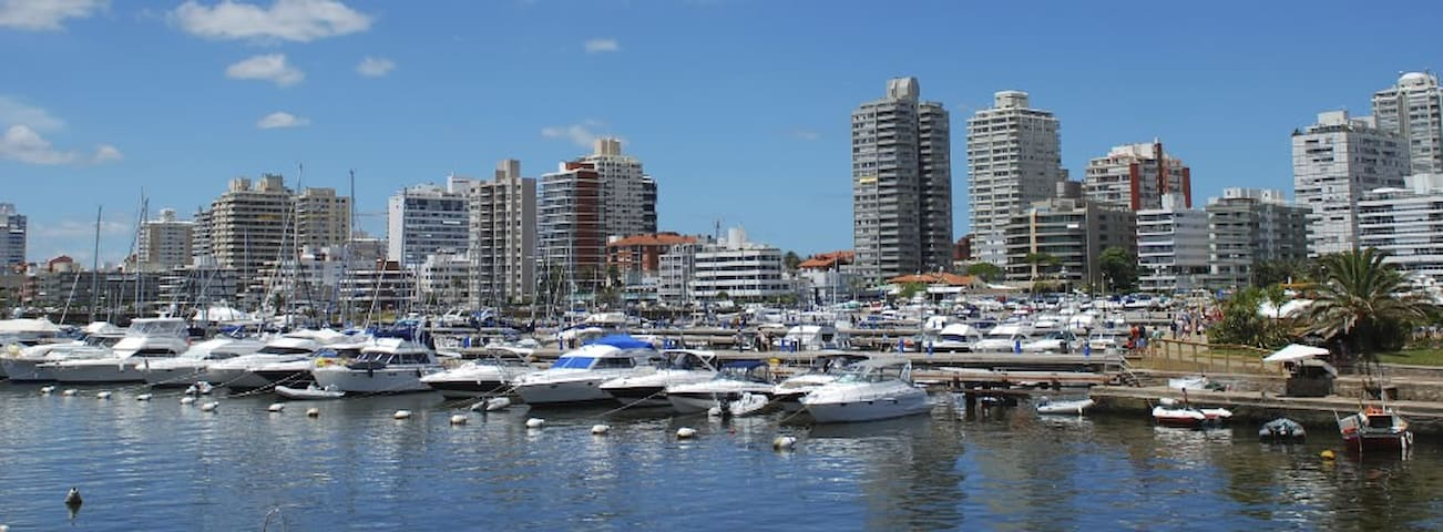 This picture was taken from the marina in front of the of the apartment.