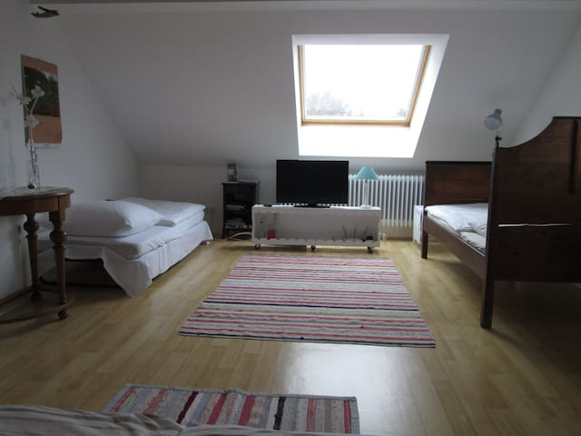 Mit einem Gästebett und der umgewandelten Couch können bequem 4 Personen übernachten.