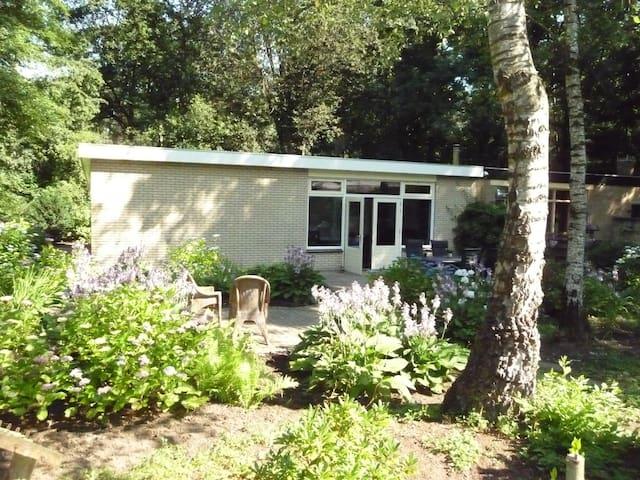 Luxery bungalow - Zelhem - Hytte