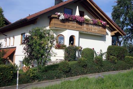 Sonnige 3 Zi-Ferienwohnung im ZAK - Geislingen - Apartment