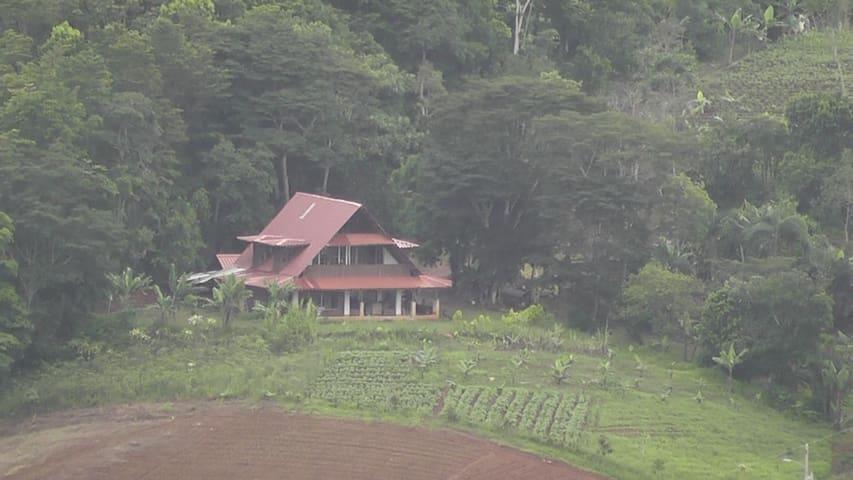 Rancho - Pérez Zeledón Canton - Overig