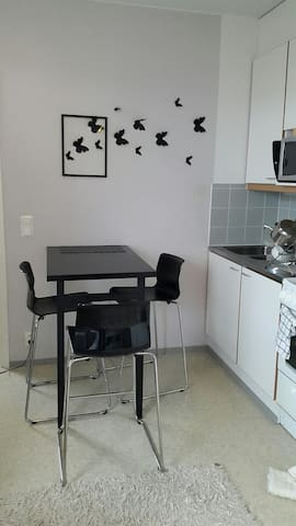 Neat apartment in Hervanta - Tampere - Appartement