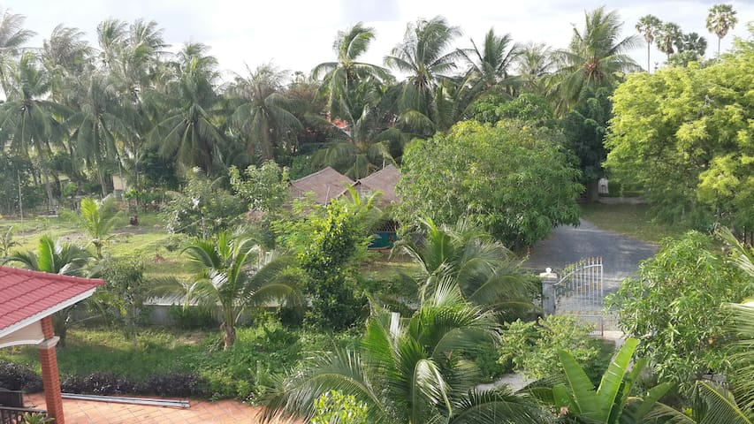 Homestay with private Bungalows &main wooden house