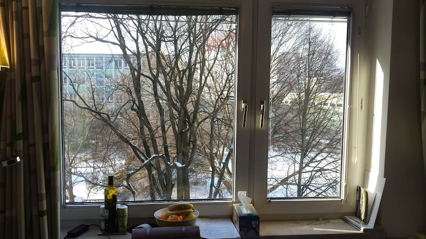 Clean, Sunny appartment in Linz