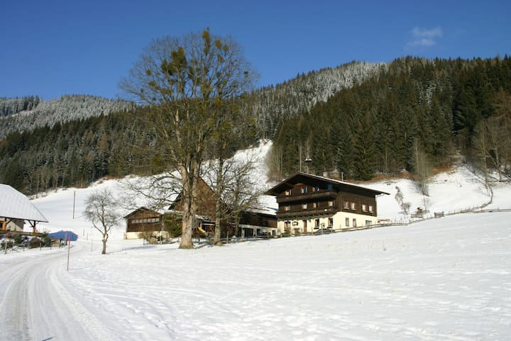 Cosy guest house at Schladming - Schladming - Hus
