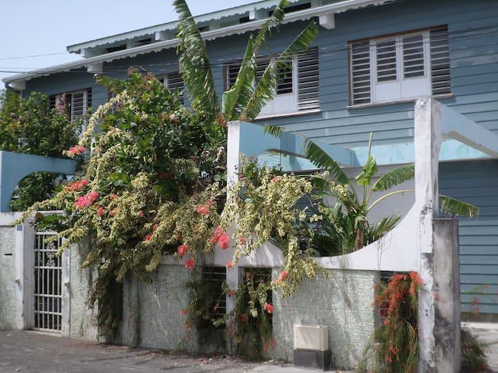 Vacances tropicales chez Frantz