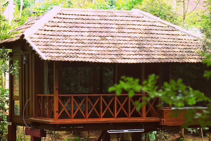 The Granary:wooden cabin on stilts!