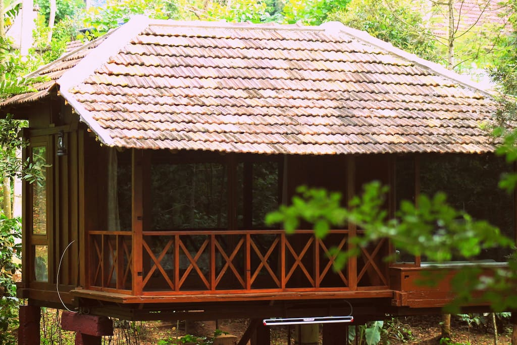 The granary wooden cabin on stilts cabins for rent in for Log cabin homes on stilts