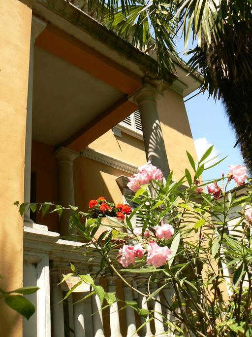 Esterno Villa Liberty Urbino