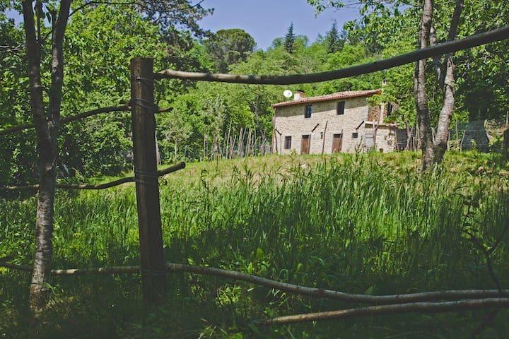 Casa Paladini - Castiglione di Garfagnana - Casa