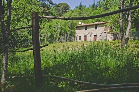 Casa Paladini - Castiglione di Garfagnana