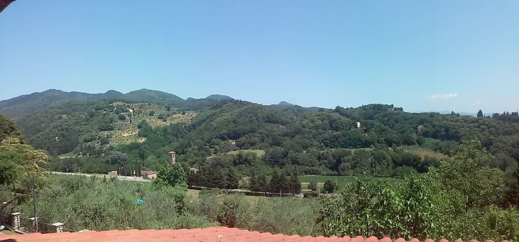 Villino con grande giardino - Ronta - Dům