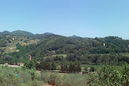 Villino con grande giardino - Ronta - House
