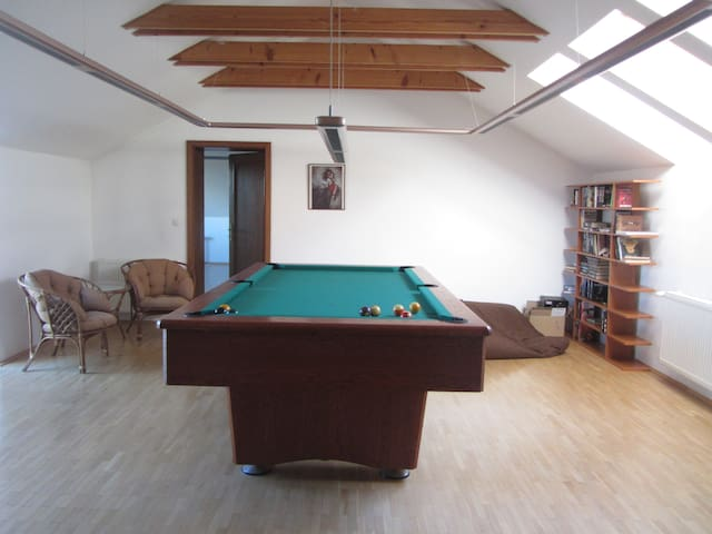 Great room in lovely family place. - Zálesie - House