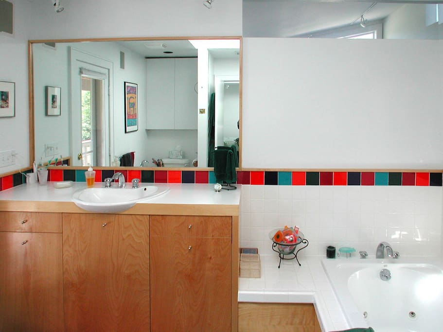 Alternate view of master bathroom with jacuzzi tub