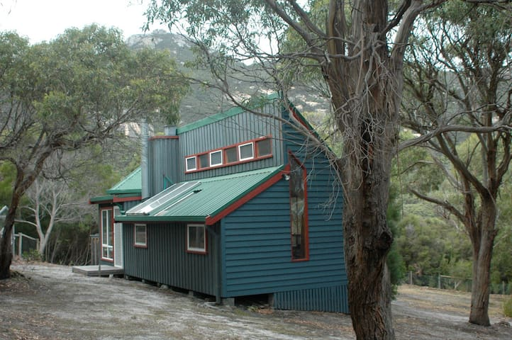 Outside view, nestled in the bush, with MT Strzelecki  in the background