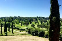 The view of the golf course