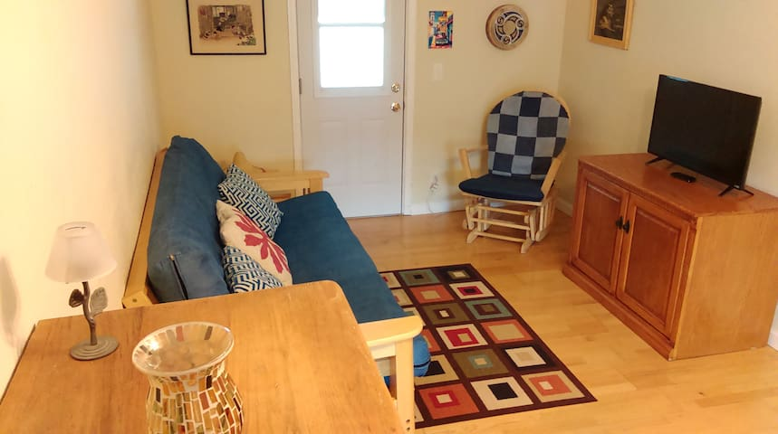 Cozy guesthouse in historic town. - Tarpon Springs - Appartement