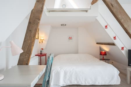 Light attic with lovely roof garden - The Hague