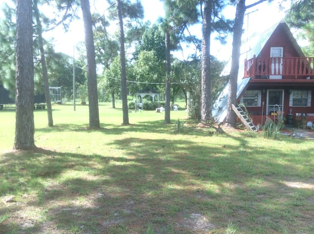 Olive Grove Get Away. - Brooksville - Cabin