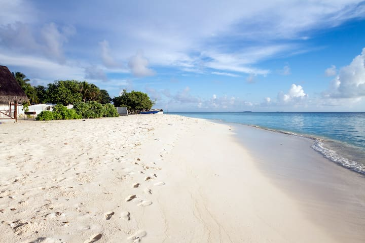 Maldives Beach Holiday, Tropic Tree - Gulhi - Bed & Breakfast
